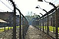 Concentration camp. - panoramio.jpg
