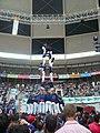 Concurs de Castells 2010 P1310303.JPG