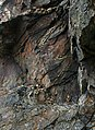 Contorted Rock Strata on the Cliff Face - geograph.org.uk - 489957.jpg