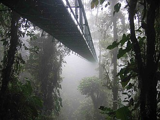One of the hanging bridges of the skywalk at the Monteverde Cloud Forest Reserve in Monteverde, Costa Rica disappearing into the clouds Costa rica santa elena skywalk.jpg