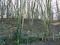 Cotswold Way, Breakheart Plantation, near Winchcombe - geograph.org.uk - 687471.jpg