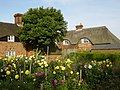 Cottage garden in Southrope - geograph.org.uk - 244010.jpg