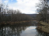Cowpasture River.jpg