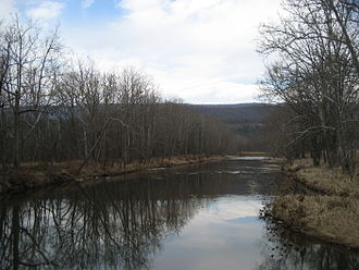 Cowpasture River - Cowpasture River below Fort Lewis.
