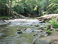 Crabtree Creek Company Mill Trail Umstead NC SP 0098 (3583054185).jpg