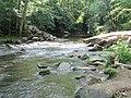 Crabtree Creek Company Mill Trail Umstead NC SP 0098 (3583054185).jpg