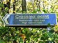 Crossing Point on A78 - geograph.org.uk - 666523.jpg