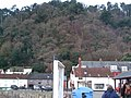 Culver Cliff Wood from Minehead Harbour - geograph.org.uk - 1705706.jpg