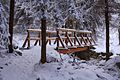 Czerniawa Zdrój, na drodze ścieżki rowerowej - panoramio.jpg