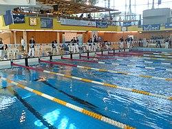 definition of breaststroke