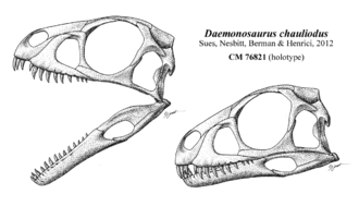 """Daemonosaurus - Reconstructed skull, which interprets the """"buck teeth"""" as being due to the teeth loosening from their sockets"""