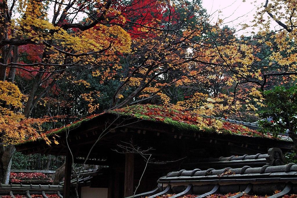 Daitoku-ji (4579792023)