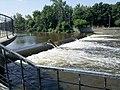 Dam and fish - panoramio.jpg