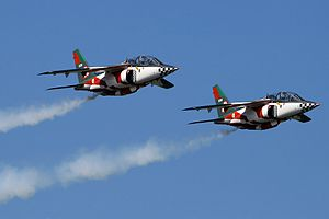 Dassault/Dornier Alpha Jet - A pair of Dassault-Dornier Alpha Jet A in formation flight