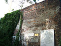 Day 2- The Wall (45074810).jpg