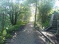 Delph Donkey steps to Ladcastle road. Dobcross - geograph.org.uk - 776433.jpg