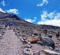 Descanso en Volcan Chimborazo.jpg
