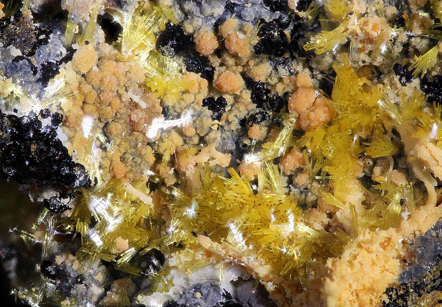 Lemon yellow needles of Dewindtite from Grury, France (Field of view: ca. 5 mm)
