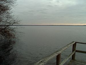 Chesapeake, Virginia - Photograph of Lake Drummond, Great Dismal Swamp National Wildlife Refuge, Virginia