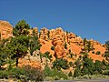 Dixie National Forest, Red Canyon - panoramio - Frans-Banja Mulder (1).jpg