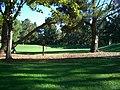 Dog training area - panoramio.jpg
