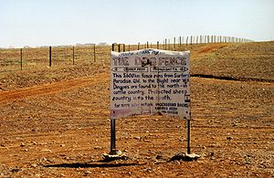 Outback - The Dingo Fence near Coober Pedy