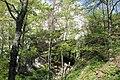 Dolina rečice Perast 04.jpg