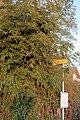 Dorfbeuern - Ort - Motiv - 2021 02 08-3.jpg