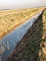Drain near Carr Dyke - geograph.org.uk - 702910.jpg