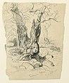 Drawing, Studies. Trees, December 23, 1885 (CH 18368997).jpg