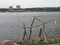 Driftwood1 (143649644).jpg