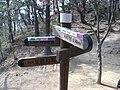 Dulesangil Kukan 12 Shirubong.jpg