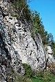 Dunham Dolomite (Lower Cambrian; Route 2 roadcut, southeast of the Lamoille River bridge, Vermont, USA) 13.jpg