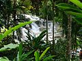 Dunn´s river falls and park.jpg