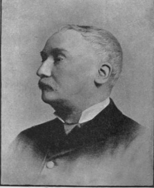 Edward Dutton Cook - Dutton Cook in 1883