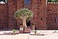 Duwisib Castle-3554 - Flickr - Ragnhild & Neil Crawford.jpg