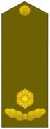 ES-Army-OF3