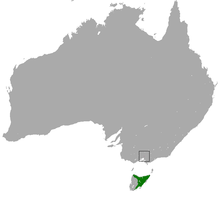 Eastern Barred Bandicoot area.png