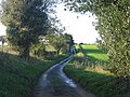 Easthill Lane looking towards Kirby Bedon - geograph.org.uk - 80726.jpg