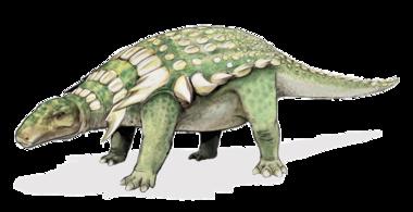 c-14 dinoszauruszok