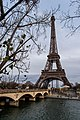 Eiffel Tower by the River.jpg