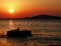 El sol, el Orinoco y la isla de Fajardo.jpg