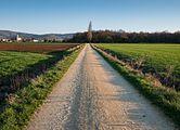 Elburgo - Camino de Elburgo a Gazeta 01.jpg