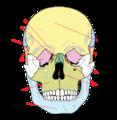 Es-Human skull front in Spanish (bones).png