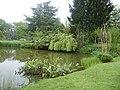 Etang dans le parc a chateaubourg - panoramio.jpg
