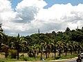 Ex Colardeau's Property - panoramio.jpg