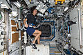 Expedition 32 flight engineer Sunita Williams Exercises on CEVIS.jpg