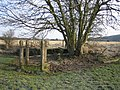 Eynsham, Footbridge over Wharf Stream - geograph.org.uk - 122482.jpg