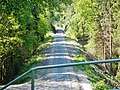 Fahrradstraße im Naturpark Rothaargebirge - panoramio.jpg