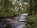 Falls, Gryfe Water - geograph.org.uk - 1524555.jpg